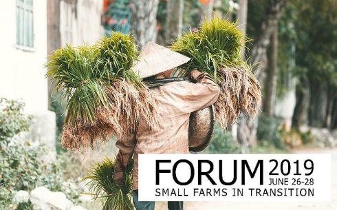 Logo IAMO Forum 2019